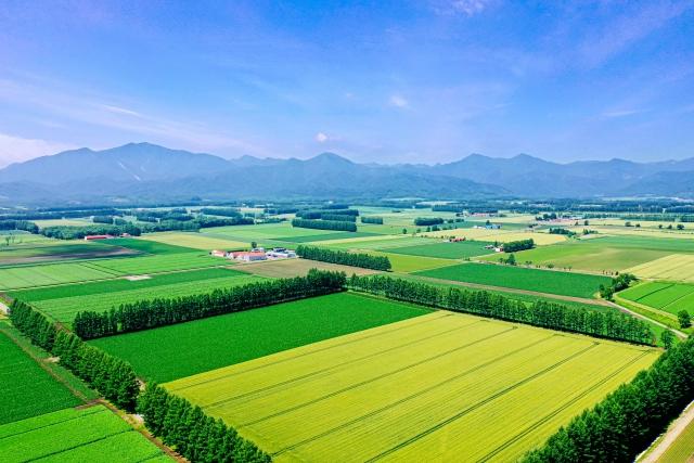 ドローンが農業を進化させる3